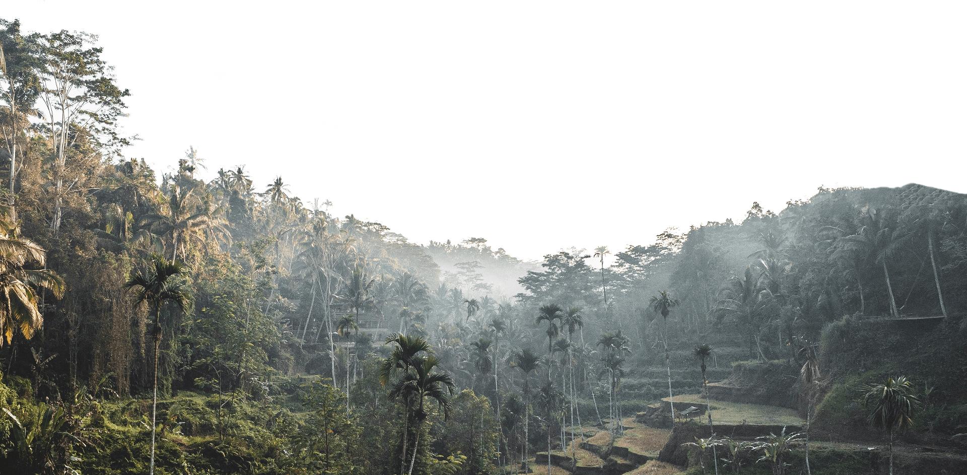 Sperling Nachhaltigkeit